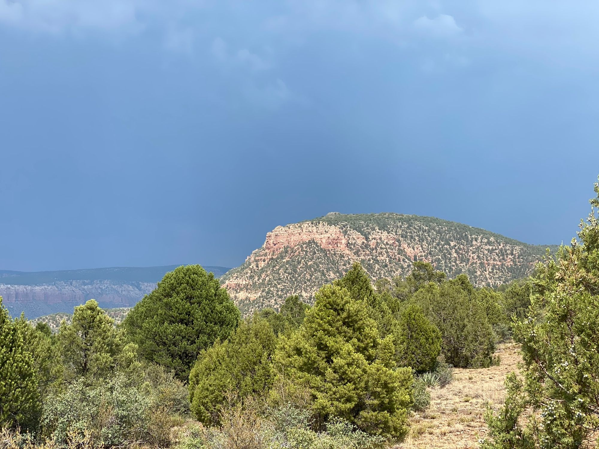 Bob Bear Trailhead is beautiful and has amazing views of the red rock