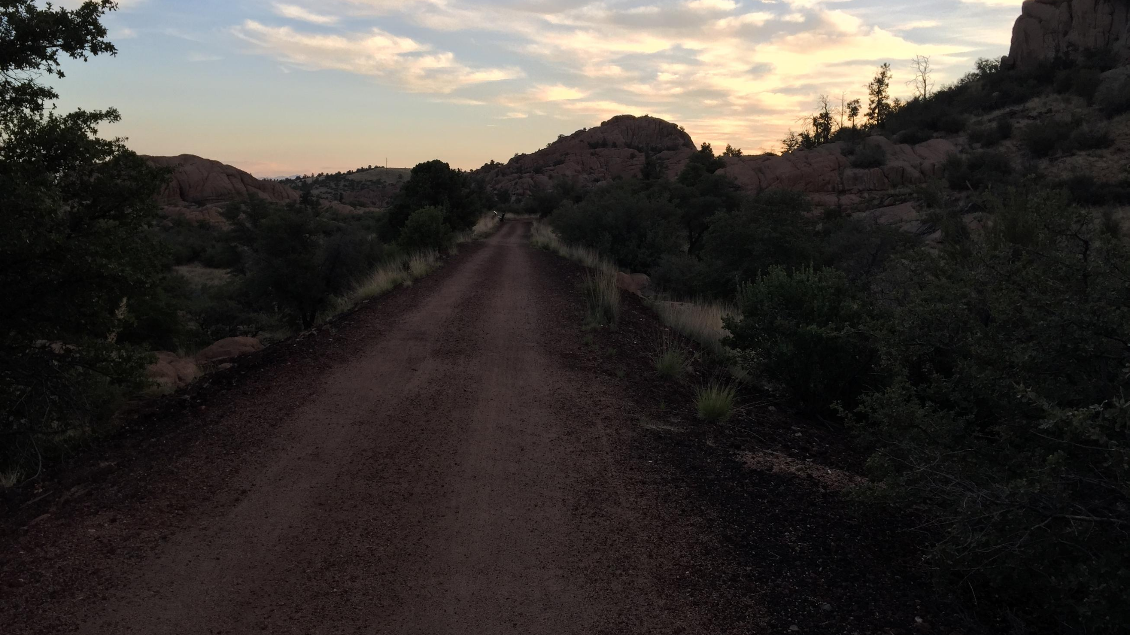 the road up from Phoenix to Prescott with lush trees around